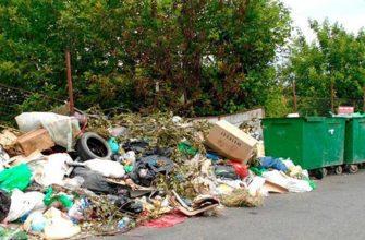 Краснодар потратит еще 100 миллионов рублей на уборку свалок, расположенных рядом с мусорными контейнерами 2
