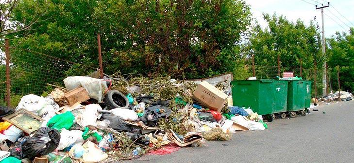 Краснодар потратит еще 100 миллионов рублей на уборку свалок, расположенных рядом с мусорными контейнерами 1