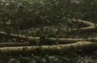 24 июня объявлено о штормовом предупреждении в Краснодаре 10